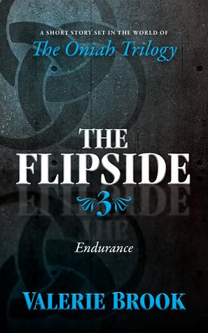 Endurance  by  Valerie Brook