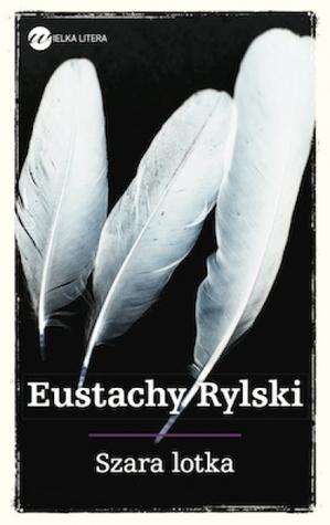 Szara lotka Eustachy Rylski
