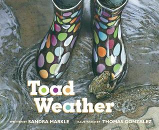Toad Weather by Sandra Markle