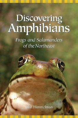 Discovering Amphibians: Frogs and Salamanders of the Northeast John Himmelman