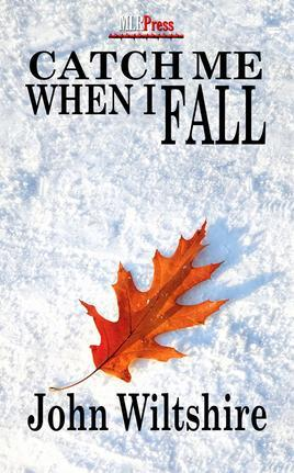 Book Review: Catch Me When I Fall by John Wiltshire