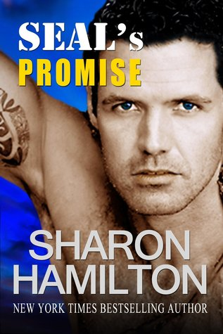 SEAL's Promise: Bad Boys of Team 3 (SEAL Brotherhood, #8)