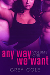 Any Way We Want (Want, #1)