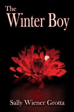 cover Winter Boy