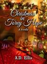 Christmas in Torey Hope, A Novella