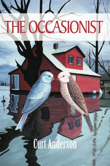 The Occasionist by Curt Anderson
