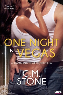 {Review} One Night in Vegas by C.M. Stone