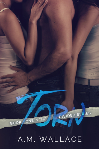 Torn (Divided #1)