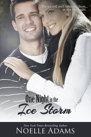 One Night in the Ice Storm by Noelle Adams