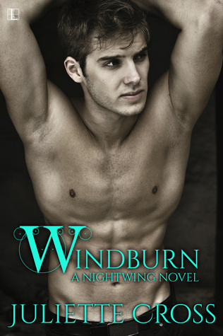 Windburn (Nightwing, #2)