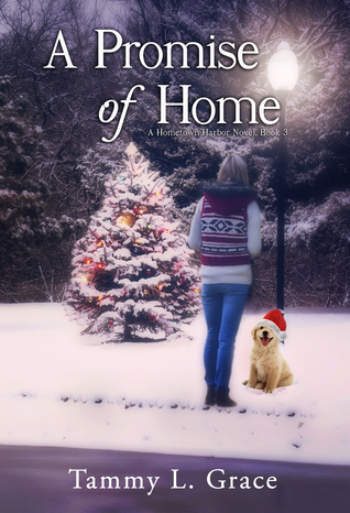 A Promise of Home (Hometown Harbor Series, #3)