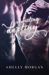 Rewriting Destiny: Prequel to the Forsaken Sinners MC Series