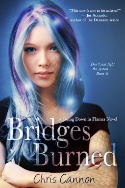 Bridges Burned (Going Down in Flames, #2)