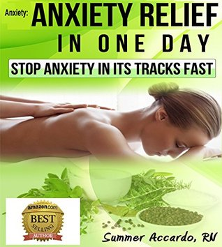 Anxiety Relief In One Day: Stop Anxiety In Its Tracks Fast Summer Accardo