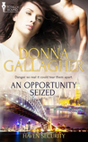 An Opportunity Seized (Haven Security #1)