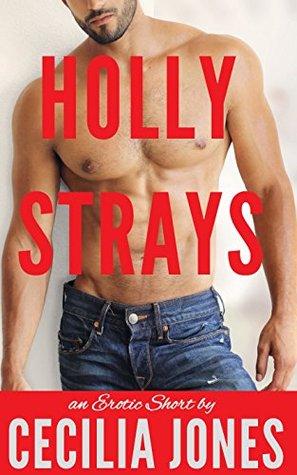 Holly Strays: A BBW Cheating Wife, Biker Alpha Male Erotic Romance  by  Cecilia Jones