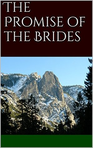 The Promise of the Brides (The Fellowship of the Last Book 1)  by  P.J. Staab