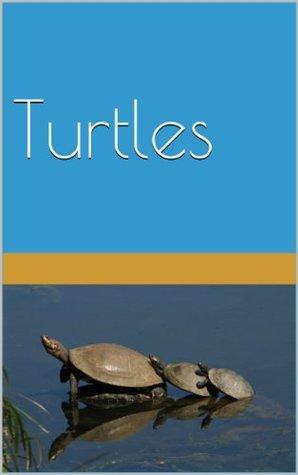 Turtle Picture Book  by  Shiela Pierson