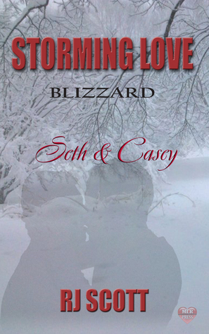 Seth and Casey (Storming Love, Blizzard #3)