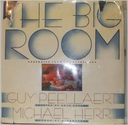 The Big Room Guy Peellaert