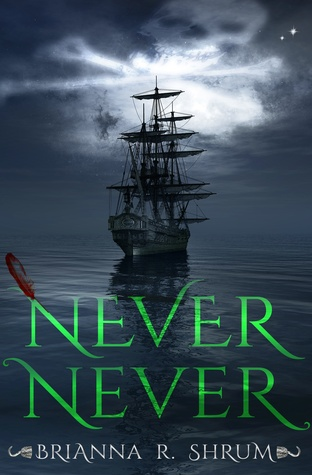 Never Never by Brianna Shrum  book cover