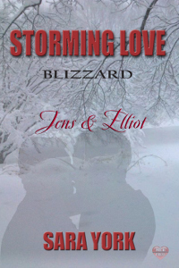 Book Review: Jens & Elliot (Storming Love: Blizzard #1) by Sara York