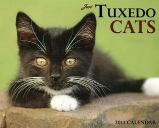 Tuxedo Cats 2011 Wall Calendar  by  NOT A BOOK