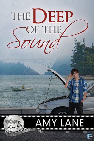 {Review} The Deep of the Sound by Amy Lane