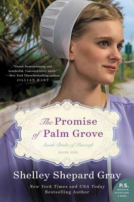 The Promise of Palm Grove (Amish Brides of Pinecraft, #1)