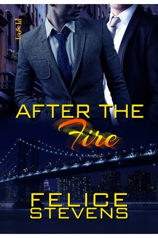 Book Review: After the Fire (Through Hell and Back #2) by Felice Stevens