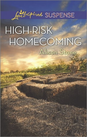 High-Risk Homecoming by Alison  Stone