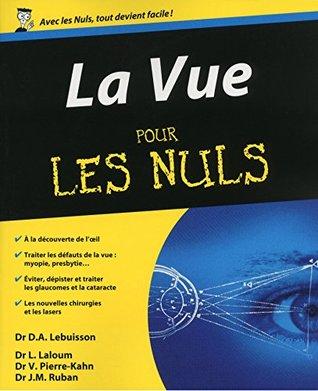 La Vue Pour les Nuls Dan Alexandre Lebuisson