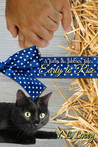 Early to Rise (Toms & Tabbies Tales #1)