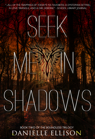 Seek Me In Shadows Cover