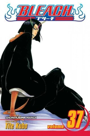 Bleach, Volume 37: Beauty Is So Solitary