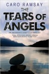 The Tears of Angels ( Anderson & Costello, #6).