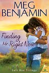 Finding Mr. Right Now (Salt Box, #1 )