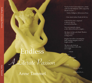 Endless by Anne Tammel