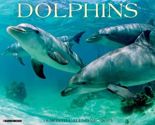 Dolphins 2015 Wall Calendar  by  NOT A BOOK