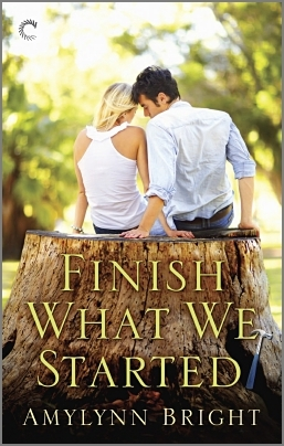 Finish What We Started by Amylynn Bright
