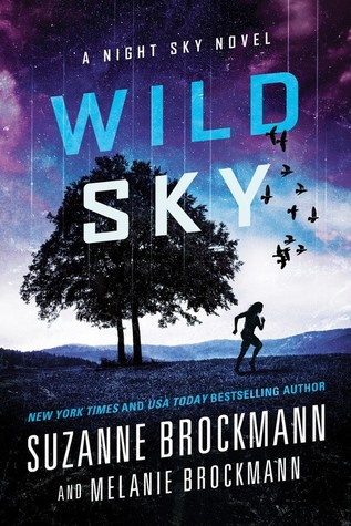 {Interview} with Suzanne and Melanie Brockmann, authors of Wild Sky (with Excerpt and Giveaway)