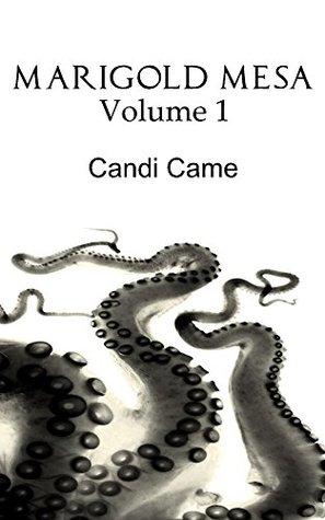 Marigold Mesa  by  Candi Came