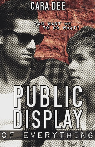 Public Display of Everything Cover