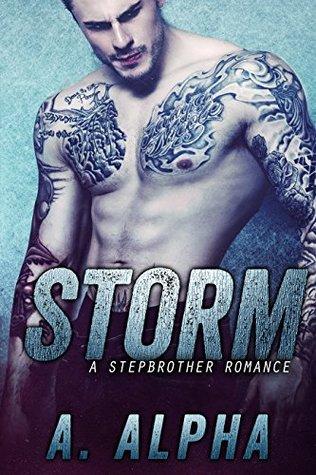 Storm: A Stepbrother Romance