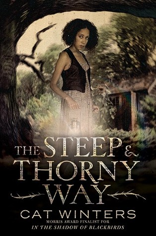 The Steep and Thorny Way by Cat Winters
