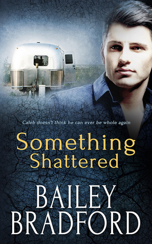 Book Review: Something Shattered by Bailey Bradford