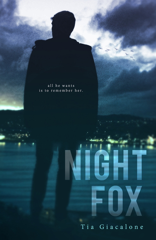 Night Fox (Hey Sunshine, #2)