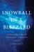Snowball in a Blizzard: A P...