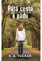 Pátá cesta k pádu (Ten Tiny Breaths, #4)