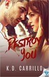 Destroy You (Destroy 3)
